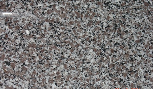 ĐÁ GRANITE VIOLET TAN DAN